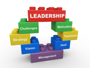 Leadership: critical but not exclusive part of good collaboration