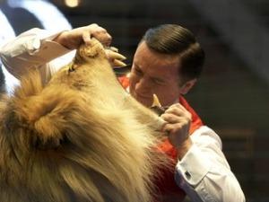 taming lion